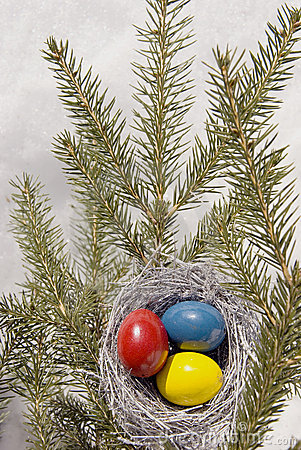 Easter eggs in nest.