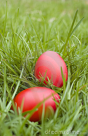 Free Easter Eggs On Grass Stock Photos - 19074163