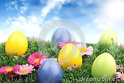 Easter meadow 1
