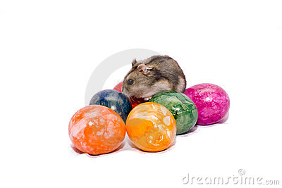 Easter mouse with eggs