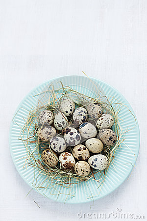 Free Easter - Quail Eggs With Hay On Pastel Blue Plate From Above Stock Image - 50808731
