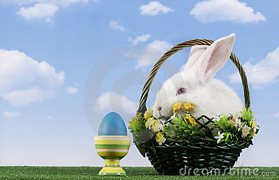 Easter-rabbit