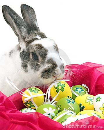 Free Easter Rabbit Royalty Free Stock Image - 7923746