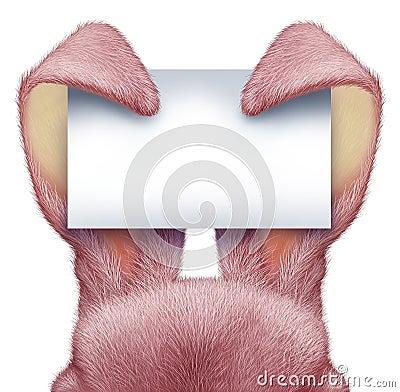 Easter Rabbit Blank Sign