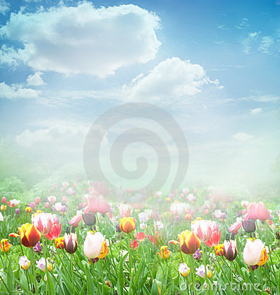 Free Easter Spring Background Stock Images - 23528284