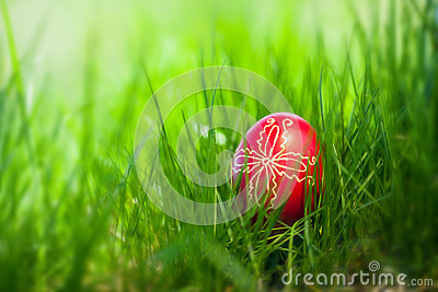 Easter traditional egg in the fresh spring grass