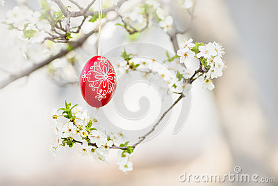Easter traditional egg hanging on bough with spring cherry blossom