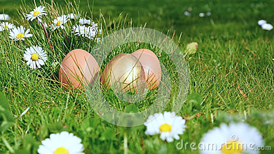 Easterl eggs