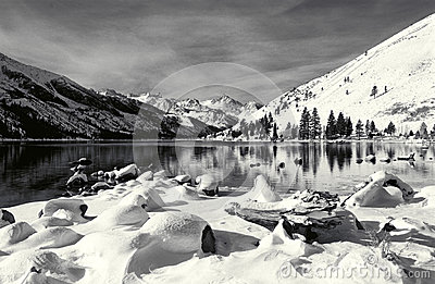 Eastern Sierra Winter Scene
