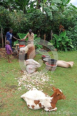 Eastern Uganda Editorial Image