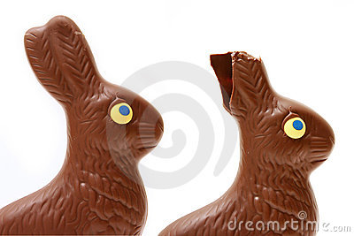 Eaten bunny