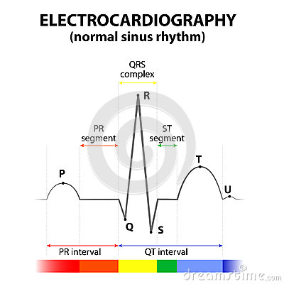 Schematic For Electrocardiogram on 12 lead ecg simulator circuit diagram