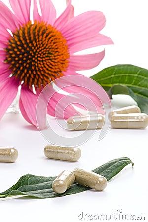 Free Echinacea Capsules Royalty Free Stock Image - 3837026