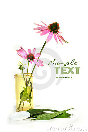 Free Echinacea Cornflower In Prescription Container Royalty Free Stock Photo - 6616125