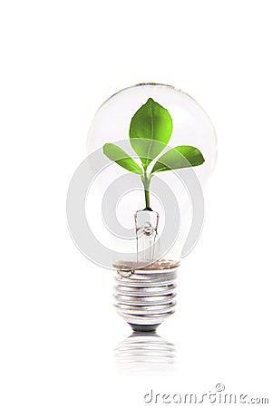 概念eco绿色里面电灯泡工厂