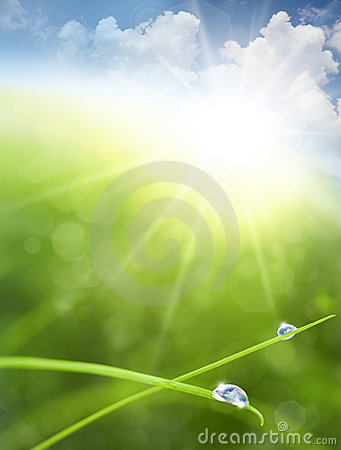 Eco background with Sky, Grass, Water Drops