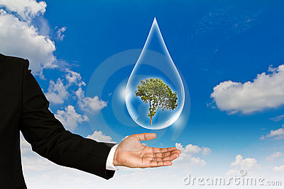 Eco concept : Hand hold water drop and tree