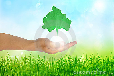 Eco concept  Hand and one tree