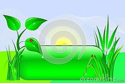 Eco design.