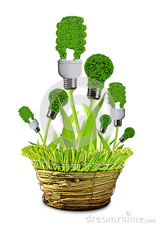 Eco energy bulbs in pot