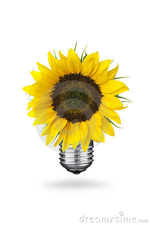 Free Eco Energy Concept Stock Image - 19931821