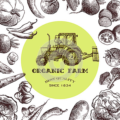 Free Eco Farm Sketch Royalty Free Stock Images - 69823639