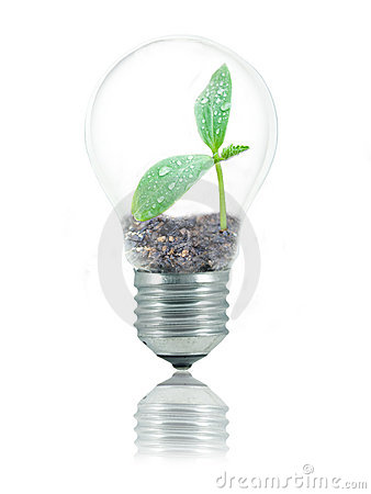 Eco friendly bulb