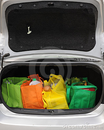 Eco-Friendly Trunk