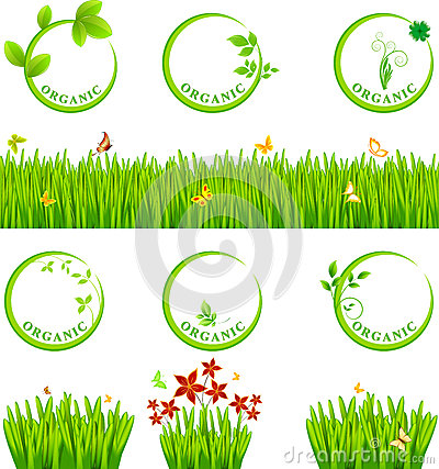 Free Eco Icon And Grass Royalty Free Stock Images - 49917159