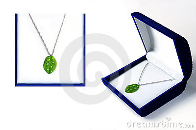 Eco Jewelry Concept