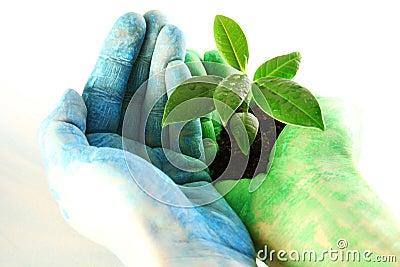 Eco Konzept
