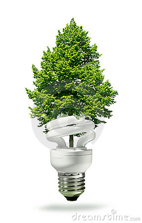 Eco lamp and tree