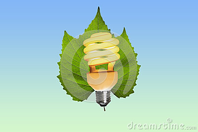 Eco light bulb lit on a green leaf