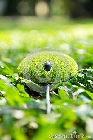 Eco mouse concept