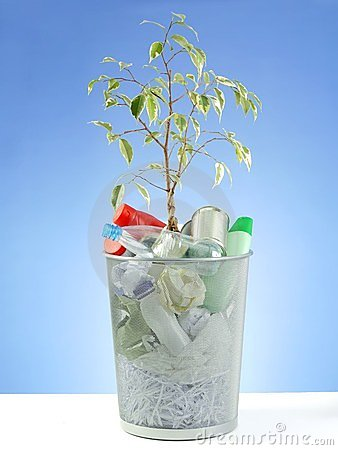 Eco plant