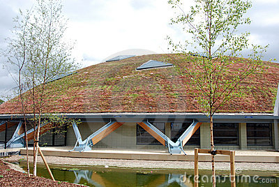Eco roof 3