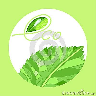 Eco22