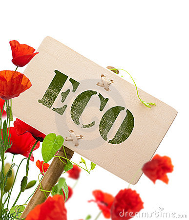 Eco sign, green plant and poppies