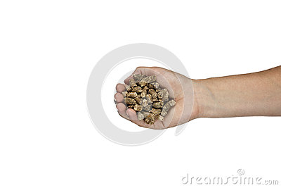 Eco wood pellet