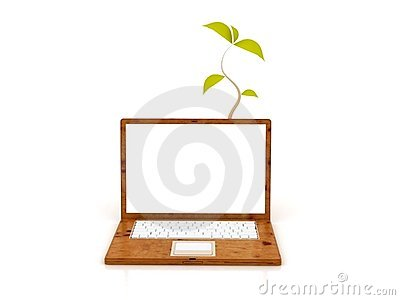 Eco Wooden Laptop