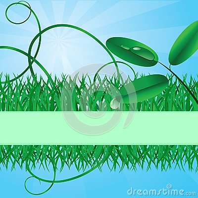 Ecological banner with a grass