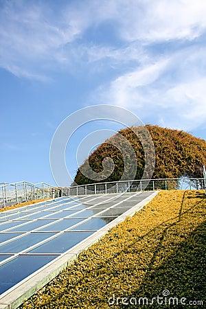 Ecological modern building .