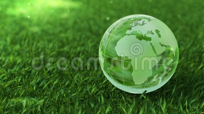 Ecology environment concept, glass globe in the green grass. Ecology environment concept, nice animation camera move and fly around rotating glass globe in the stock video