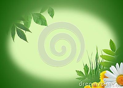 Ecology Greeting Card