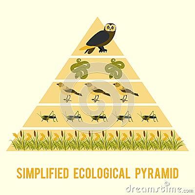 Free Ecosystem Energy Flow. Stock Images - 74522674