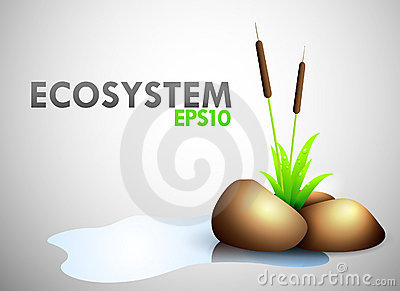 Ecosystem theme