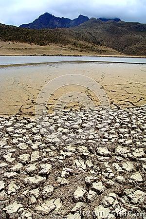 Ecuador desert