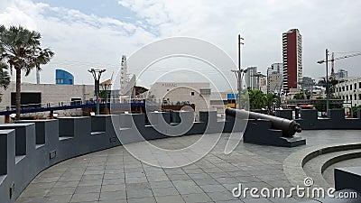 ECUADOR, JAN 16: Utgångspunkten för Malecon 2000 i Guayaquil, Ecuador Guayas flod Provinsen Guayas stock video