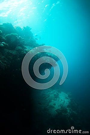 Edge of the deep
