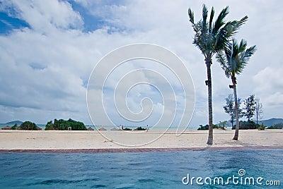 Edgeless swimming pool